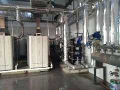 蒸汽发生器,东光蒸汽模块炉、蒸汽热源机东光县盛沃节能设备公司