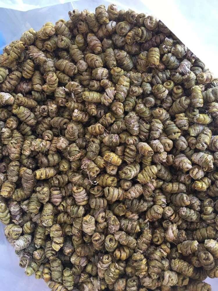 台州市铁皮枫斗 大量收购铁皮石斛产品 铁皮枫斗市场价多少