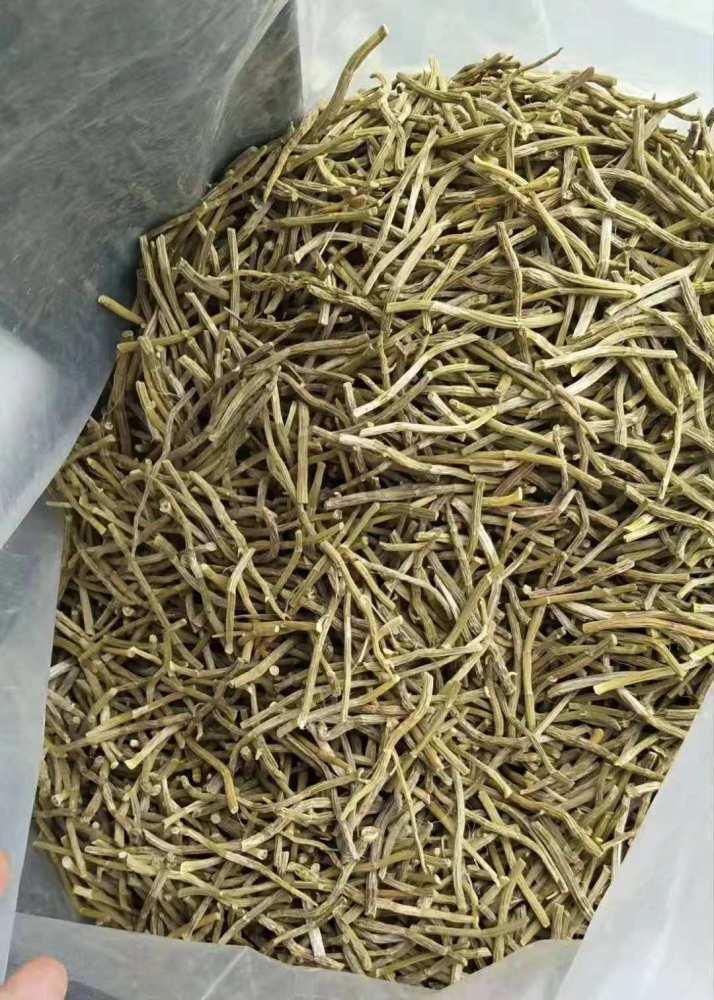 铁皮石斛、大量收购铁皮石斛、铁皮石斛哪里收购
