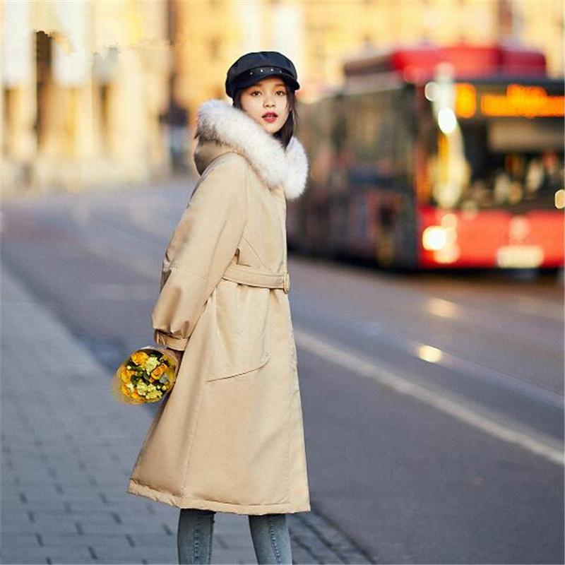 三线品牌女装大全、孝感品牌女装、蜂后国际(查看)