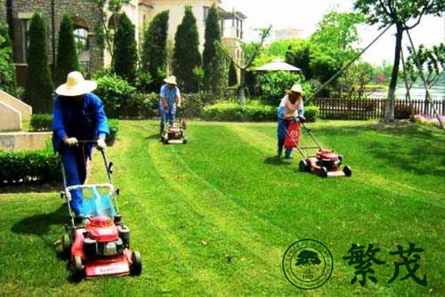 繁茂绿化养护(图)、企业绿化养护管理、绿化