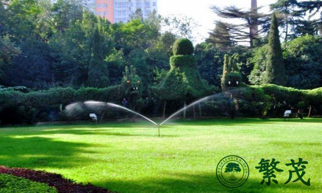 绿化|苏州绿化养护选哪家|工厂草坪绿化养护管理