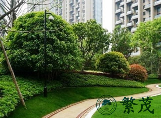 苏州绿化养护找哪家(图)|苏州绿化承包|绿化