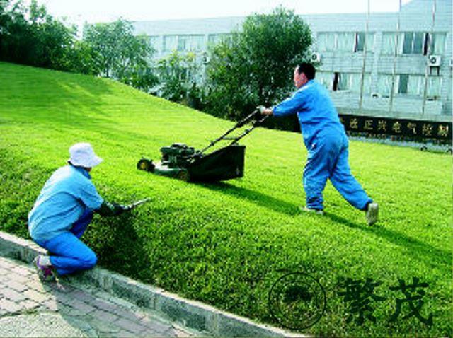苏州绿化养护选哪家(图)|单位绿化养护管理服务|绿化