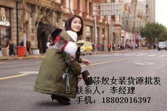 莎奴服饰女装批发(图)、休闲大码女装品牌、福州市大码女装品牌