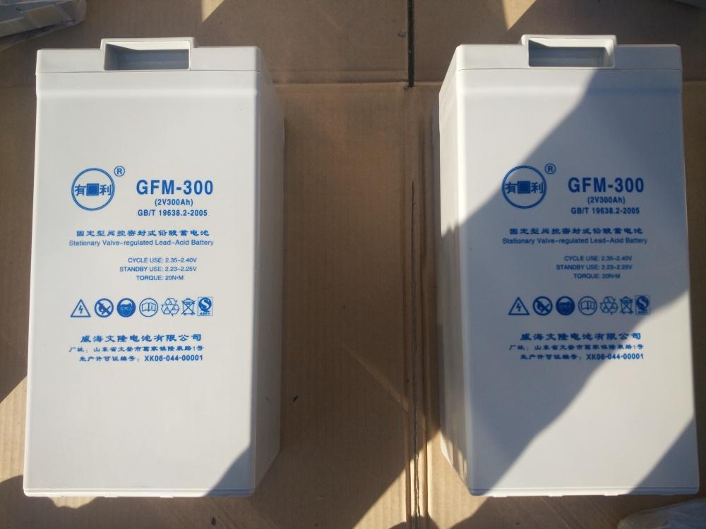 梧州市文隆有利蓄电,威海文隆有利蓄电池厂,有利蓄电池 优质商家