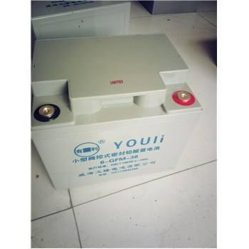 池州市有利蓄电池 威海有利蓄电池2V 6 GFM/12V系 优质商家