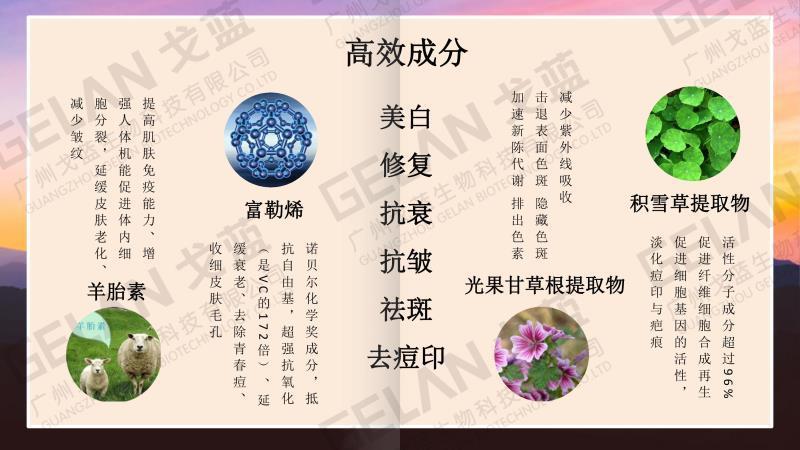 戈兰贵妇膏、台北市贵妇膏、戈蓝生物科技有限公司(查看)