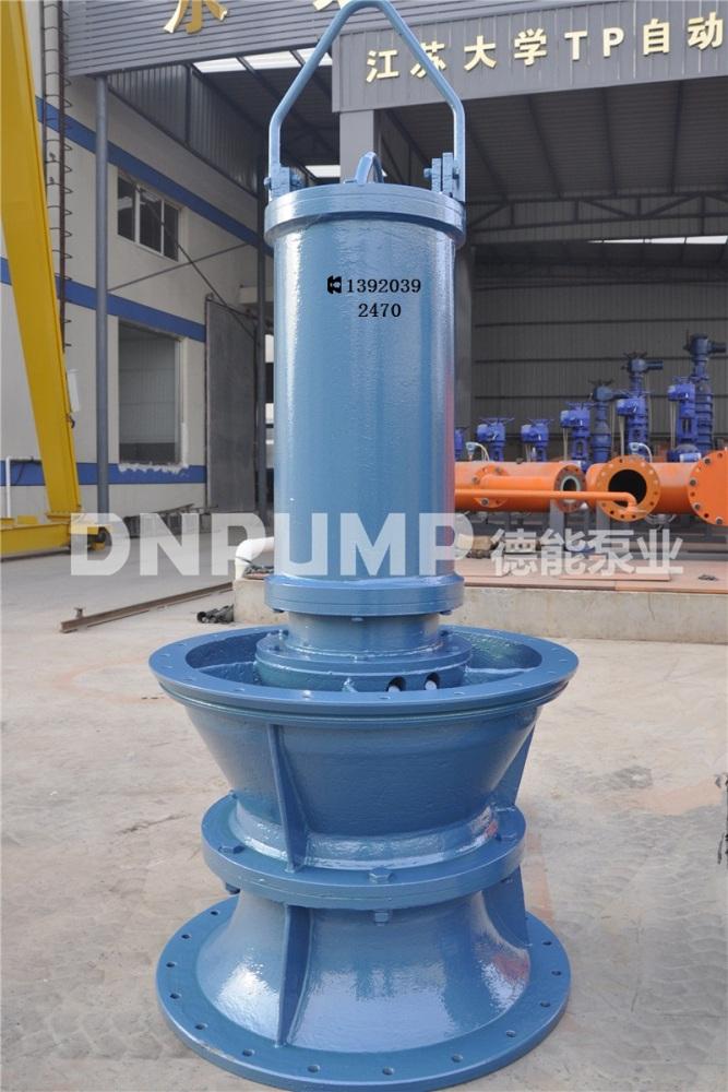 泰安市轴流泵、2000方的轴流泵、德能泵业(优质商家)
