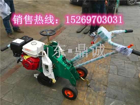 山东济宁鼎诚厂家优质草坪机械汽油起草皮机快速高效