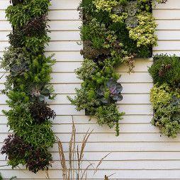 仿真植物墙多少一平方、通州区仿真植物、诗茵商贸