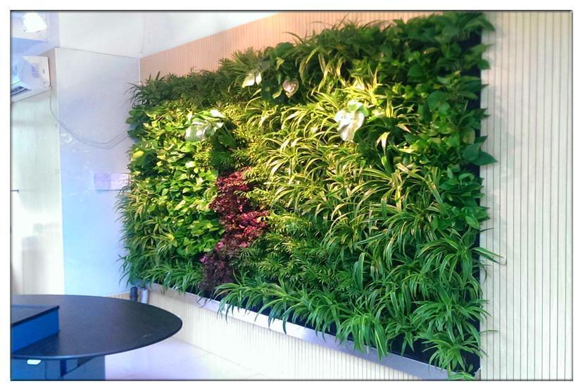 仿真植物墙、诗茵商贸(在线咨询)、朝阳区仿真植物