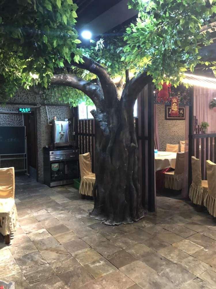 通州区树、仿真榕树图片、诗茵商贸(优质商家)
