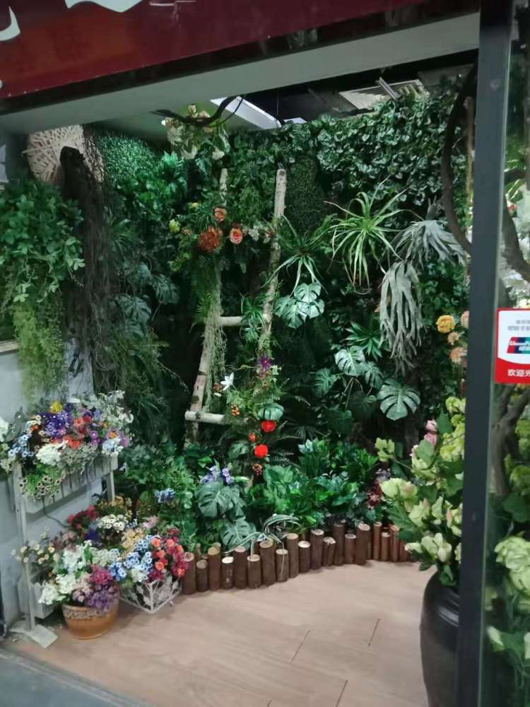 家裝仿真植物墻效果圖、晉州市植物墻、綠植墻(查看)