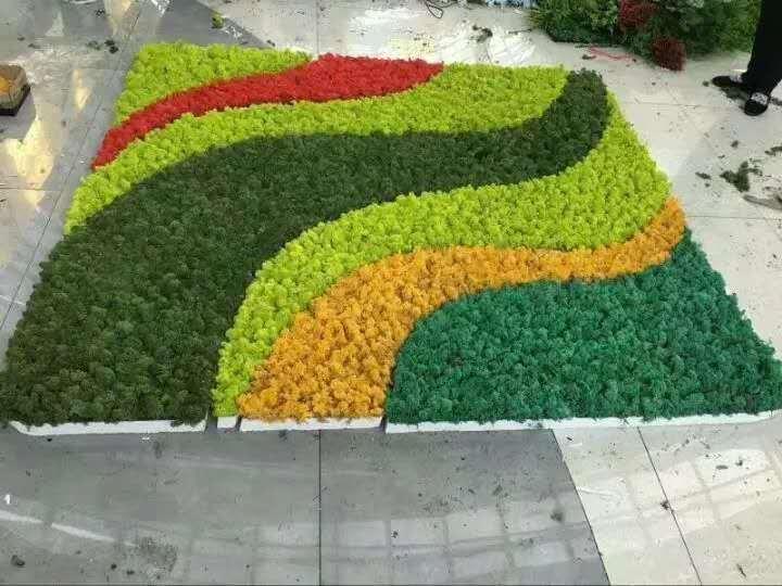 新華區植物墻、植物墻、家裝仿真植物墻效果圖