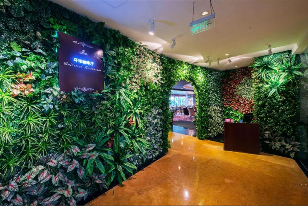 昌平區植物墻、植物墻、仿真植物墻報價