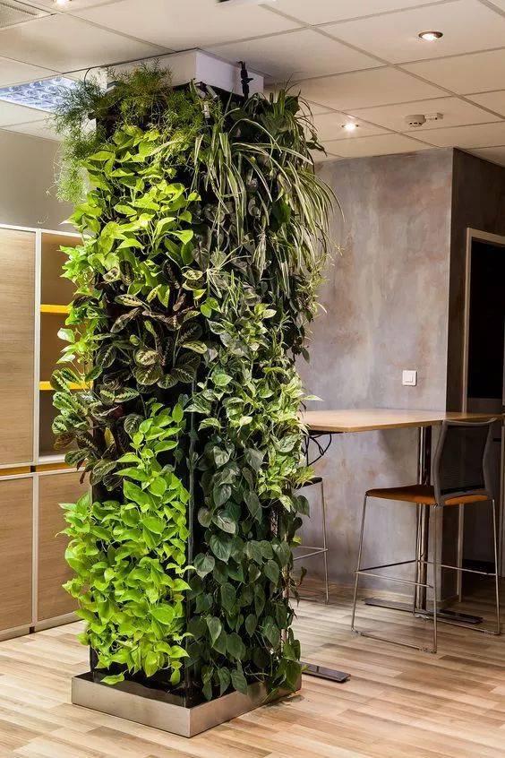 植物墻(圖)、仿真植物墻綠植、元氏縣植物墻