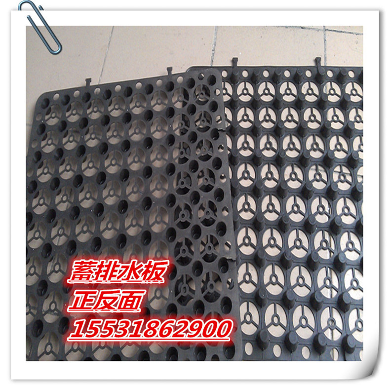 洛阳低价供应工程绿化专用楼顶蓄排水板25厚专用透水隔根板
