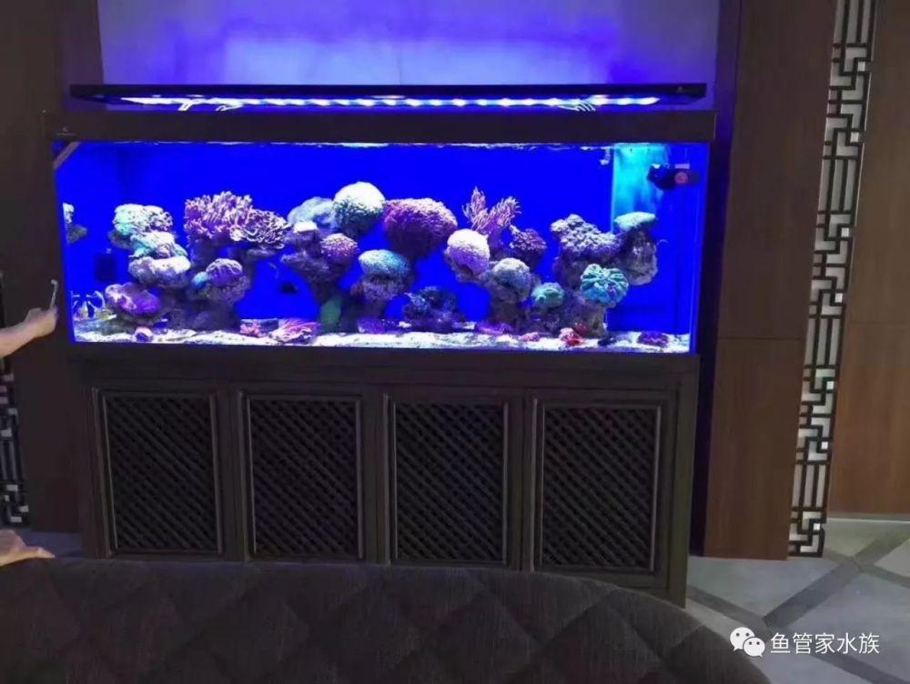 济南高新区舜泰广场鱼缸定做