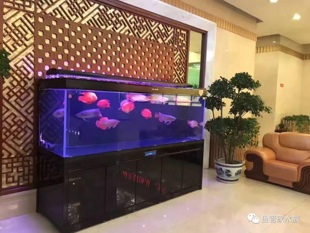 济南高新区龙奥天街鱼缸维修