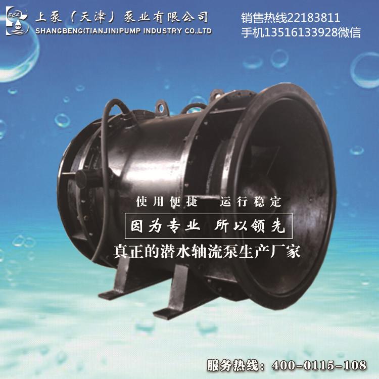 广西贺州前后双排水全贯流泵