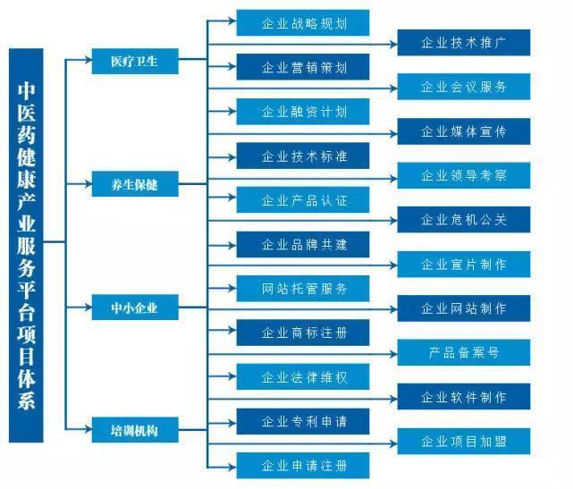 中医药服务平台、中医药健康产业服务(在线咨询)、服务平台
