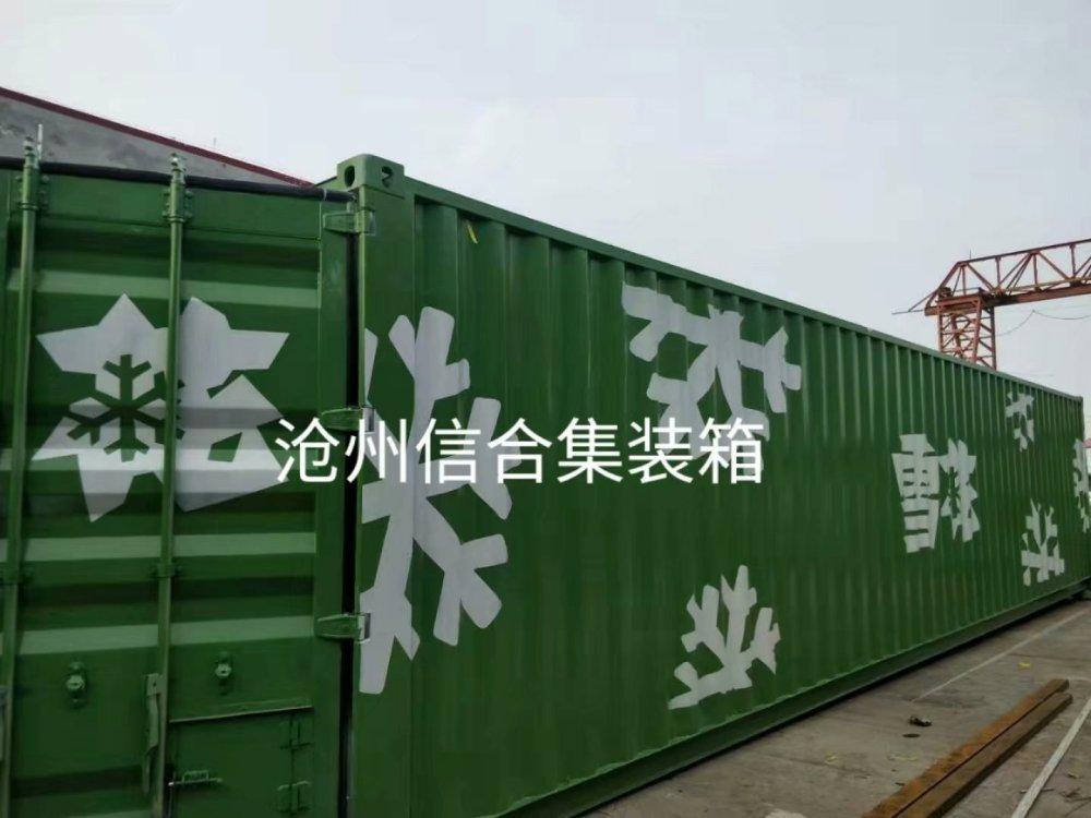 2019熱銷特種集裝箱 創意logo設備箱 河北滄州集裝箱廠家銷售