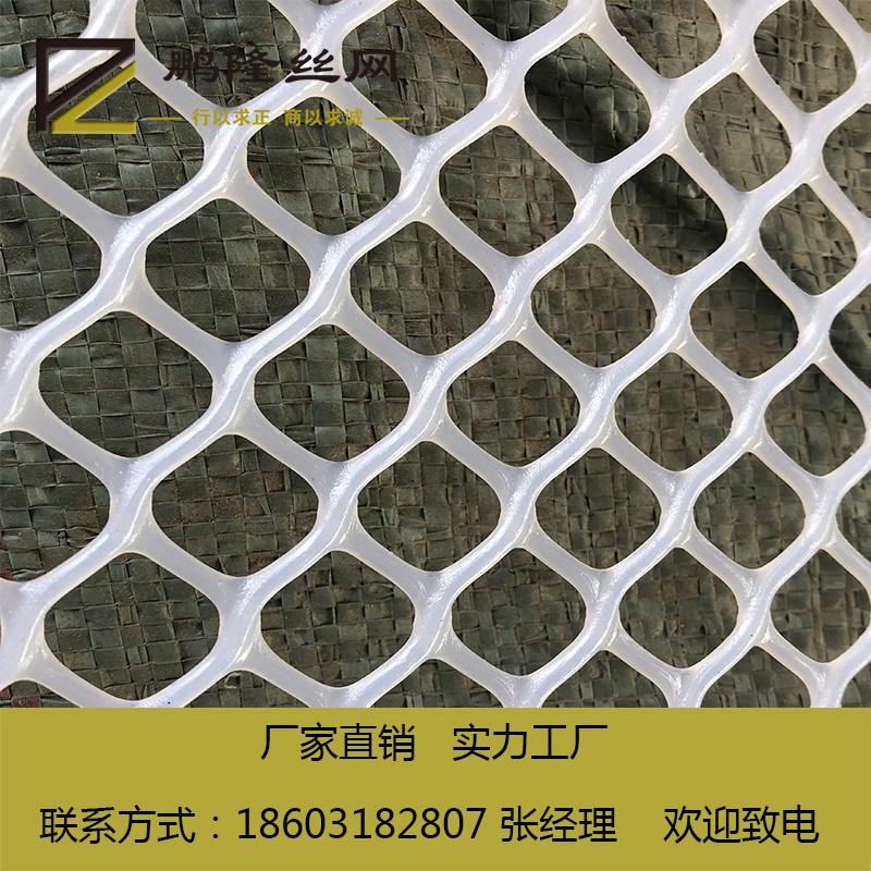 家禽養殖塑料平網、綏化市塑料平網、鵬隆絲網(查看)