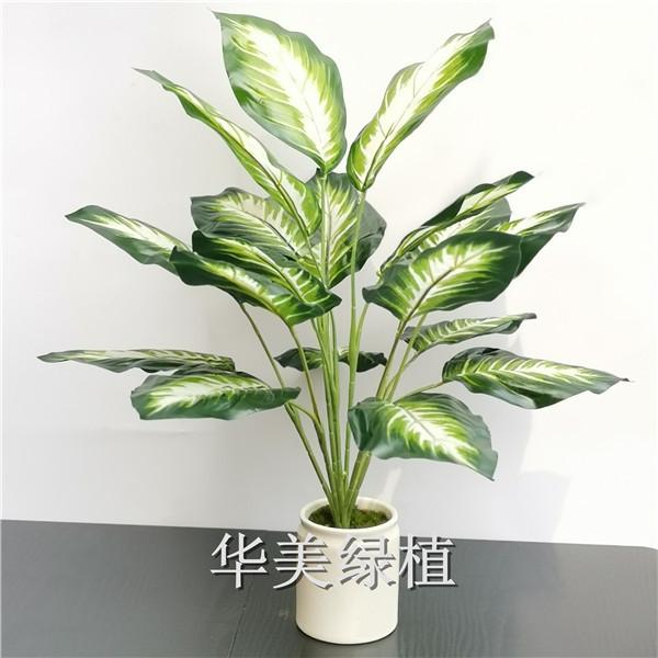 仿真绿叶盆栽装饰橄榄枝月桂叶婚庆装饰仿真花人造花假花仿真绿植