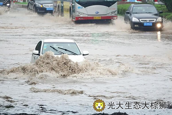 台风肆虐齐鲁大地 山东扎实推进海绵城市建设