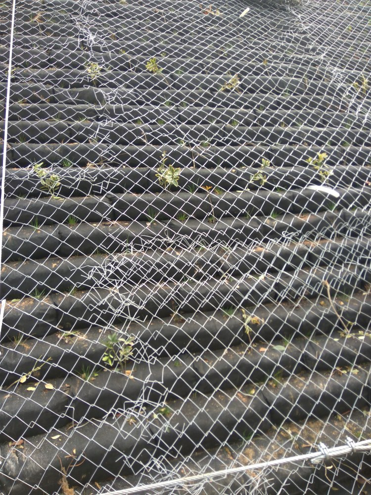环形边坡防护网、建泰丝网、十堰市边坡防护网