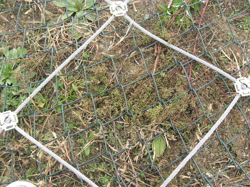 建泰丝网(图)、菱形边坡防护网、六盘水市边坡防护网