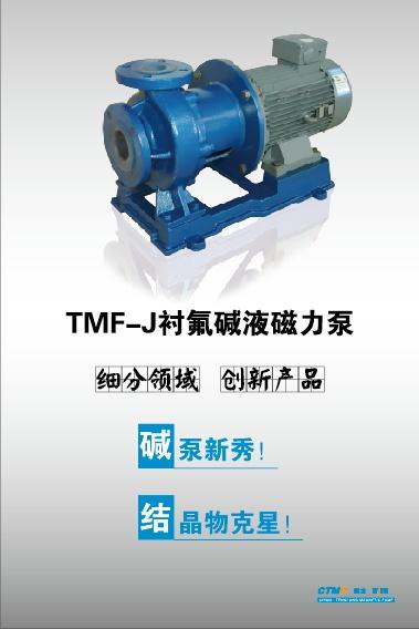 衬氟泵、深圳市泵、腾龙泵阀(查看)