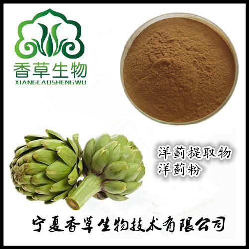 洋蓟提取物30:1 厂家供应洋蓟纯粉水溶型 朝鲜蓟浓缩液现货
