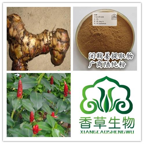 闭鞘姜提取物生产商厂家批发广商陆根茎粉120目水蕉花提取液价格