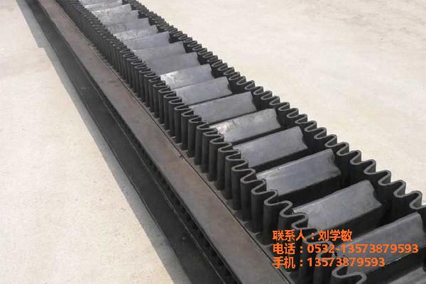 唐山钢铁厂大倾角波纹提升带哪家质量好 耐磨耐酸碱强度高