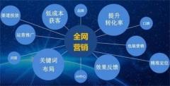 品牌线上推广方案、椒江区线上推广、网络科技