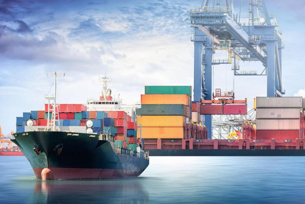 专注亚马逊FBA海运头程运输
