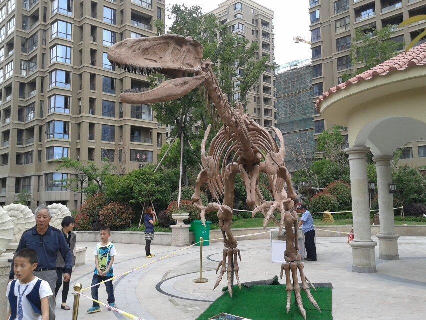 恐龙租赁厂家(图)、仿真恐龙厂家、阜新仿真恐龙