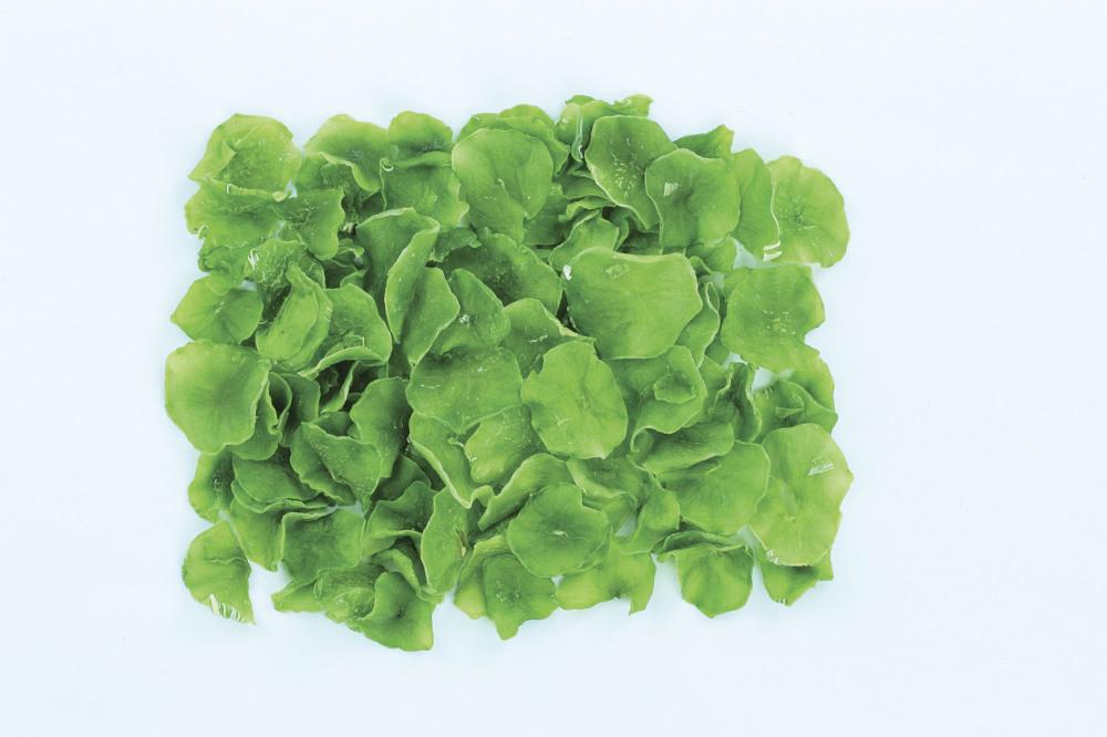 脱水莴笋干 莴苣干 餐桌必备凉菜 脱水蔬菜 厂家直销 琦轩食品