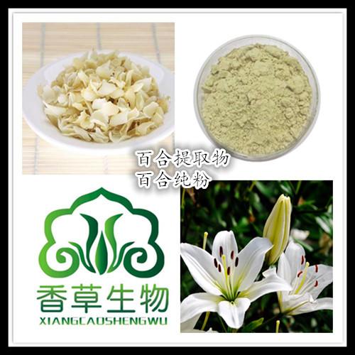百合浓缩液生产商 厂家批发百合花粉130目 百合纯粉价格