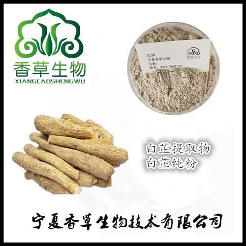 白芷提取物厂家报价 批发白芷粉130目 白芷纯粉生产商