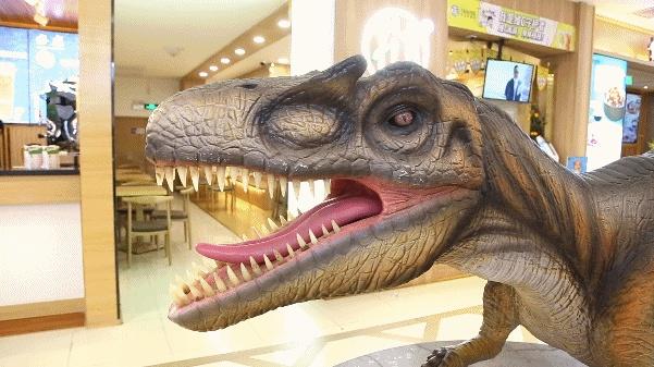 超萌酷炫恐龙展暑期爆火互动