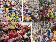 毛绒玩具批发、嘉峪关毛绒玩具、毛绒玩具厂家称斤批发(查看)