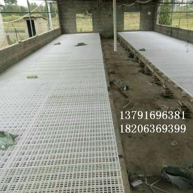 廠家批發成年雞漏糞地板養雞專用漏糞地板雞苗漏糞地板規格型號