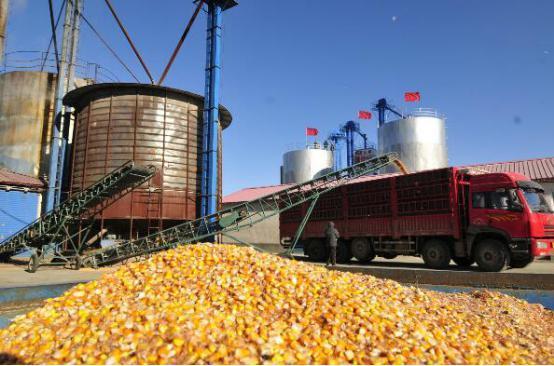 才茂基于工业级4G路由器在粮食加工产线自动化控制系统方案