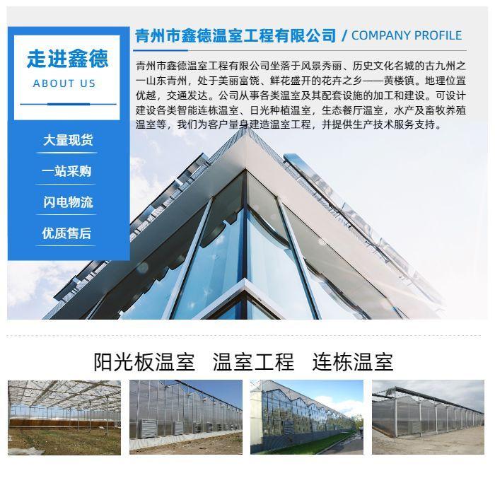 农用透明薄膜温室 塑料薄膜温室大棚 薄膜温室建造