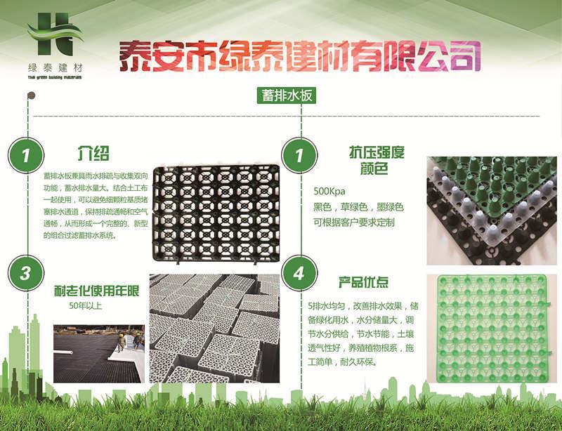 疏水板兰州排水板、疏水板屋顶绿化种植、丹东疏水板