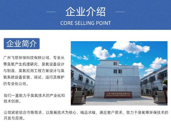 广州飞歌臭氧发生器厂家(图)、十大臭氧机品牌、淮南臭氧机