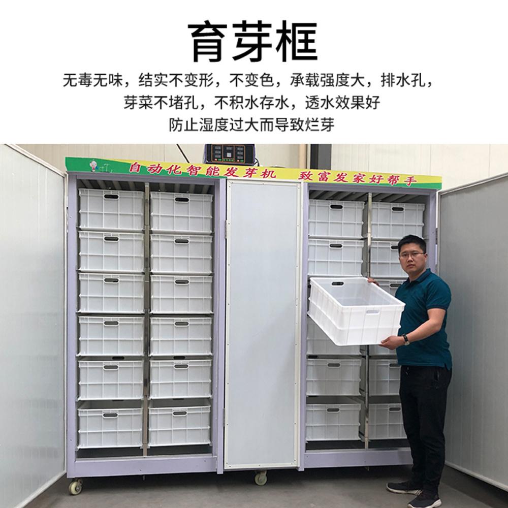 牡丹江豆芽机、鑫圣阳光、中型全自动豆芽机价格